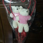 love teddy bear gift for boys