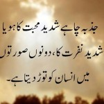 aqwal e zareen in urdu pictures,