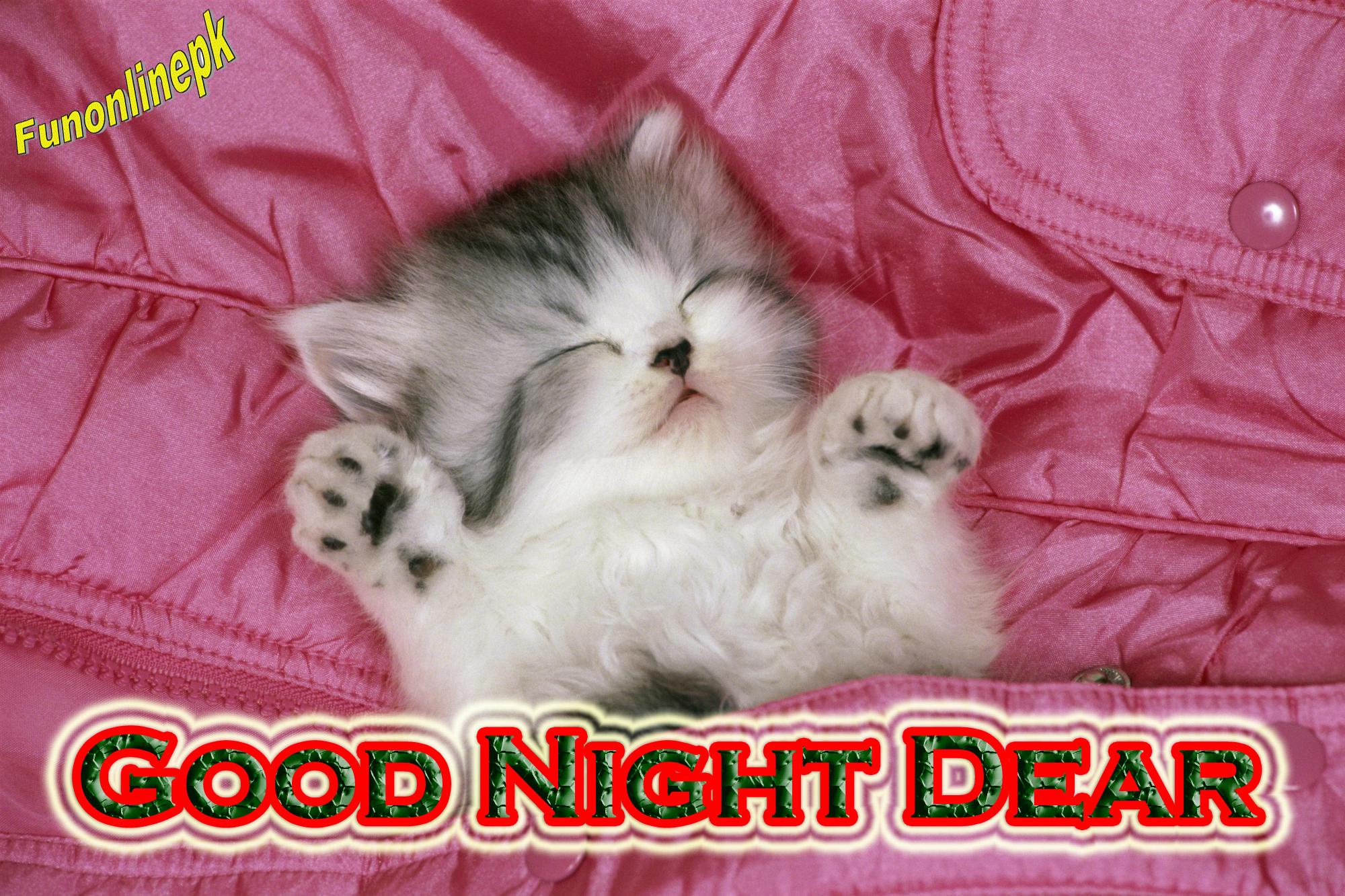 good night sms & wallpaper