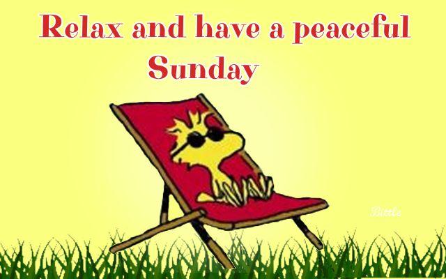 happy-relax-sunday-webstudy.pk
