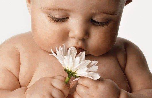 beautiful little baby with flower-webstudy.pk