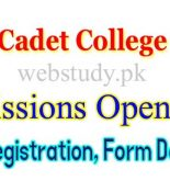 cadet college jhang admission 2019
