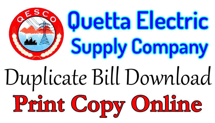 qesco duplicate bill print online